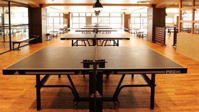 Permalink to:Guía para comprar una mesa de ping pong