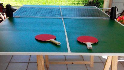 meas de tenis de mesa casera en el jardín
